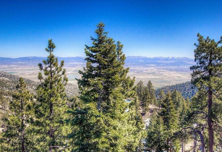 Valley View, Stateline, Naktsmītnes teritorija