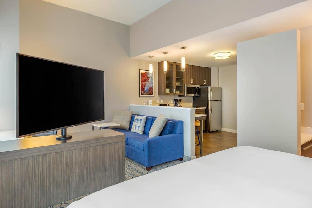 開放式客房, 1 張特大雙人床, 非吸煙房 - 客廳