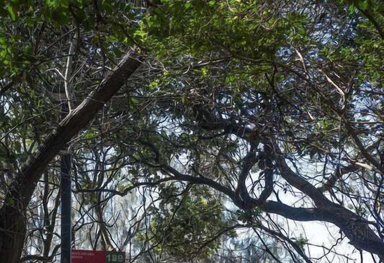 Wind 2, Mooloolaba, Áreas del establecimiento