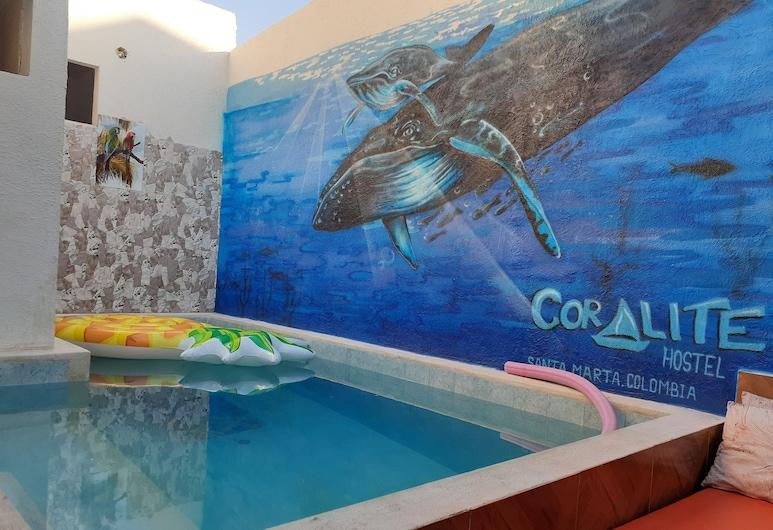 Coralite Hostel, Санта-Марта, Бассейн