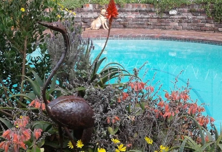 Cozy Quirky Cottage, Cape Town, Outdoor Pool