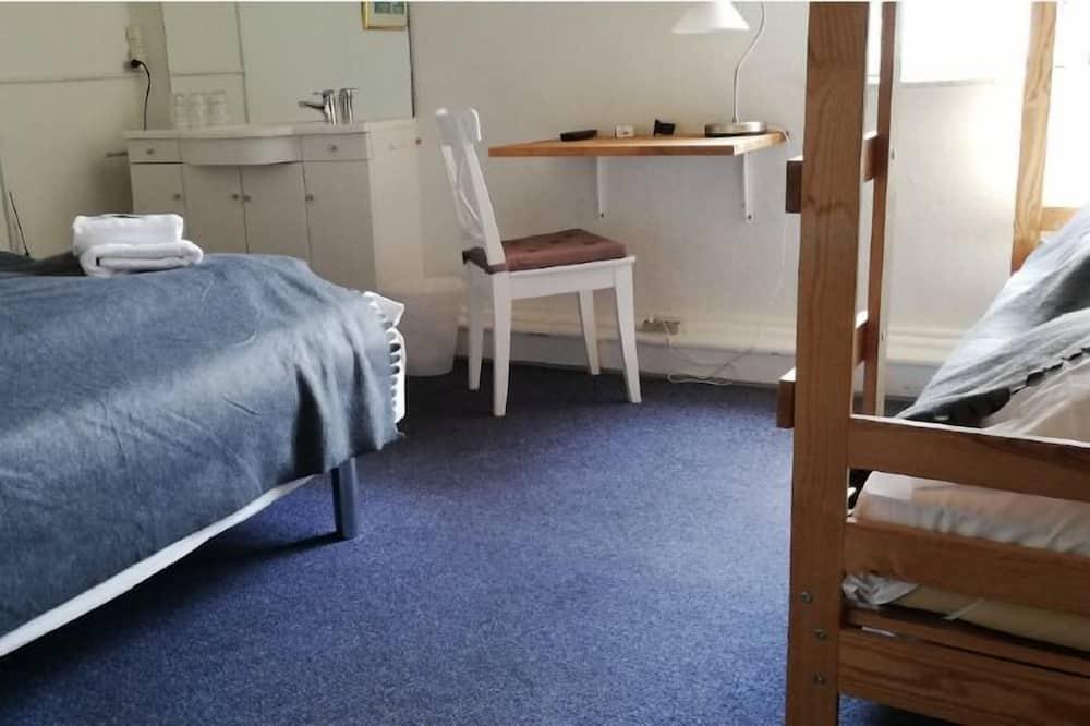 Keturvietis kambarys su pagrindiniais patogumais (16) - Svetainės zona