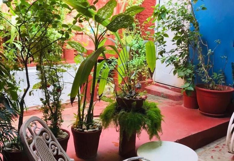 Hostal Los Manolos, Trinidad, Jardin