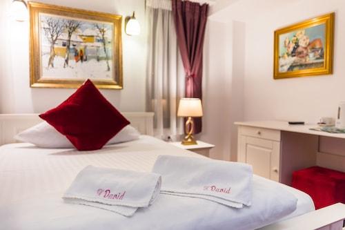 大衛民宿酒店/