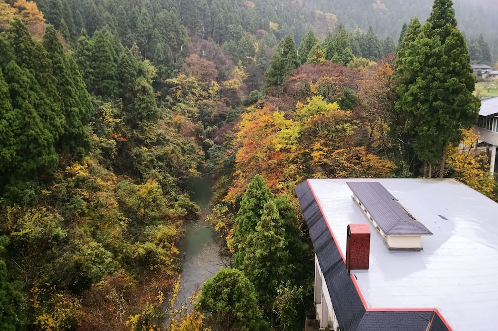 Traditional Room, Smoking (Japanese Style, Open-Air Bathroom) - Pemandangan Gunung