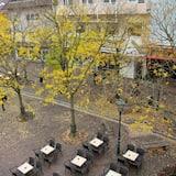 Khuôn viên nơi lưu trú