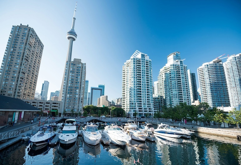Beautiful Waterfront Condos in Downtown, Toronto