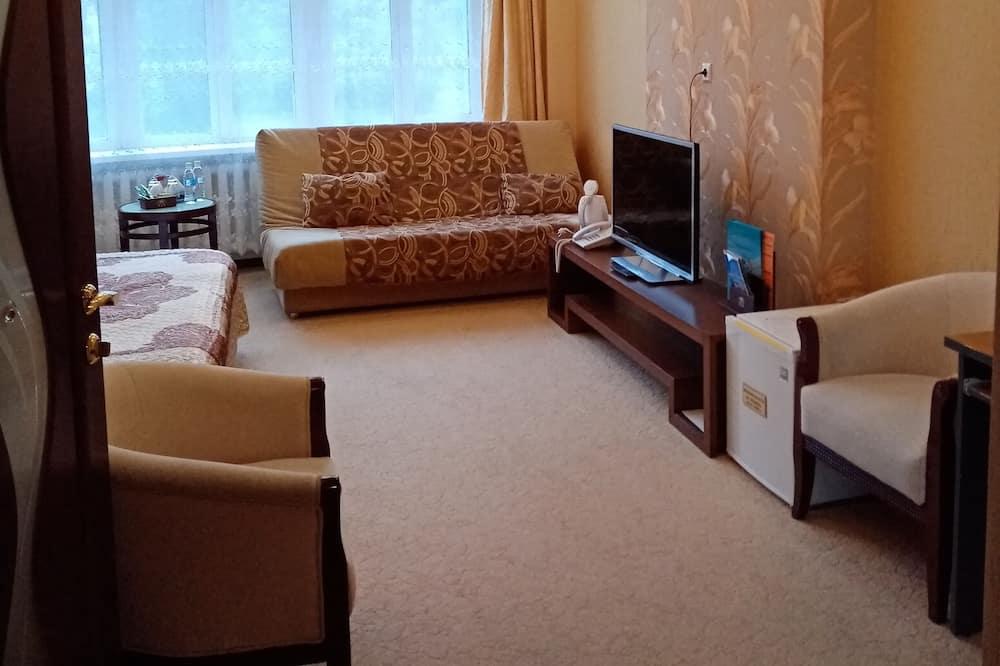 家庭客房 - 客廳