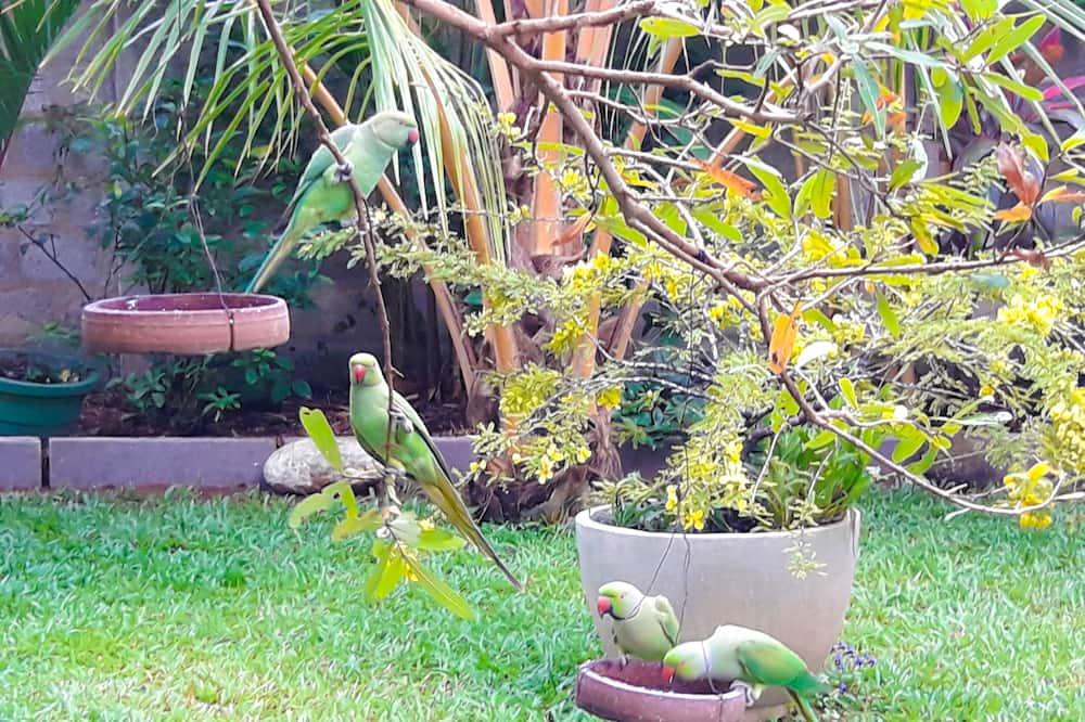 Deluxe Double Room - Garden View