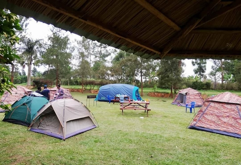 Nile Park - Campsite, Jinja, Basic Tent, Multiple Beds, Non Smoking, Room