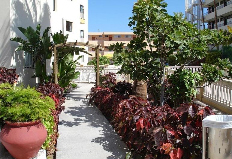 Apartamentos Los Ficus, San Bartolome de Tirajana, Lối vào nơi lưu trú