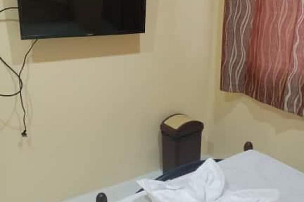 4-Bed Dorm Mixed Room - Television