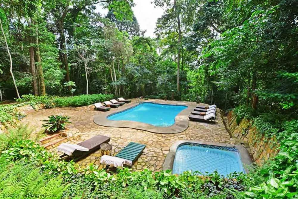 The Rainforest Geo Lodge
