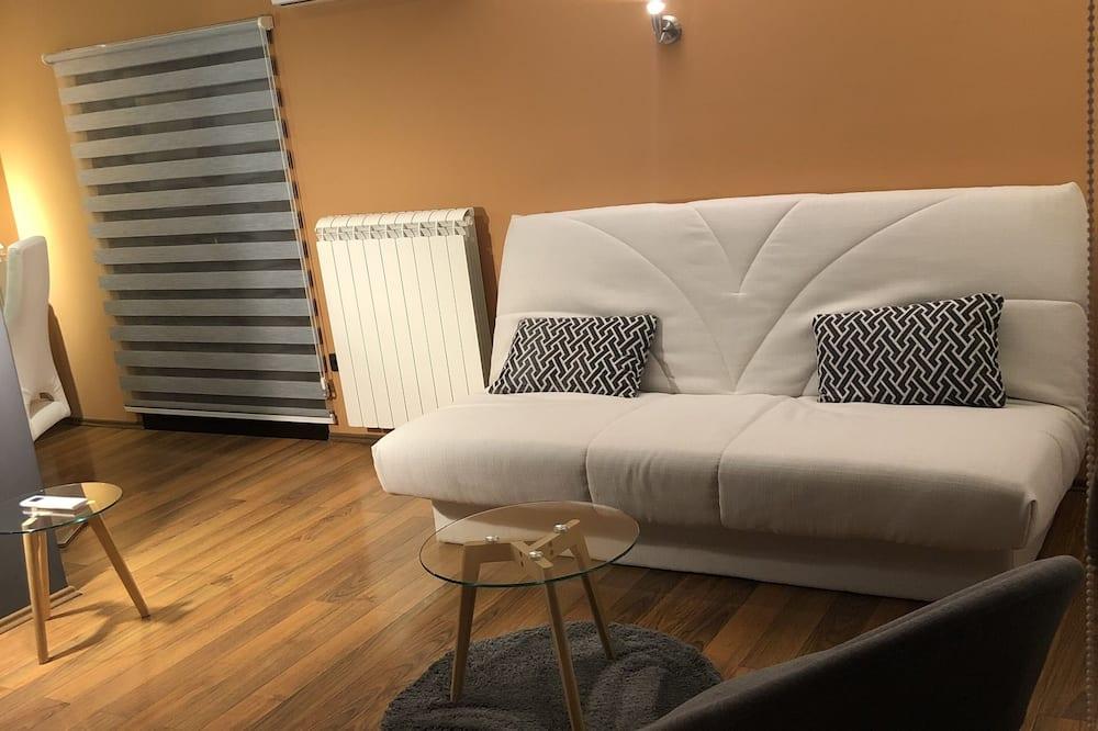 Căn hộ Exclusive, 1 giường đôi và sofa giường - Khu phòng khách