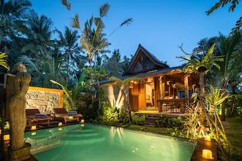 Picture of Moringa Ubud Villa in Ubud