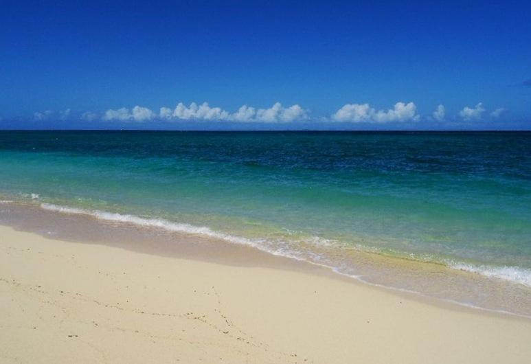 Savangi, Nakijin, חוף ים