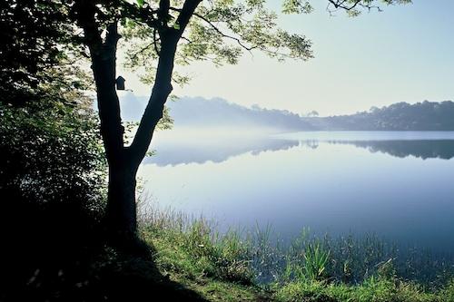 美しい場所にあるアイフェル湖lakeのアパート/