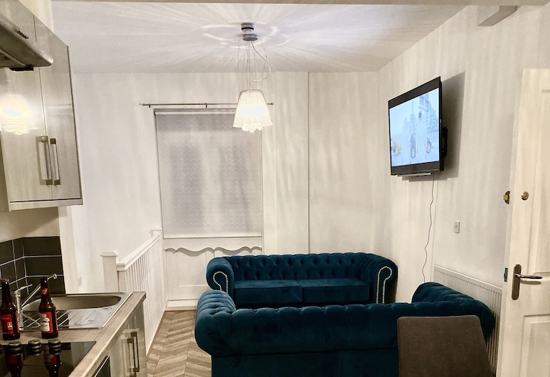 135 Duke Street, Liverpool, Deluxe Apart Daire, Oturma Alanı