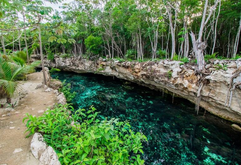 Cenote Casa Tortuga Tulum, Tulum