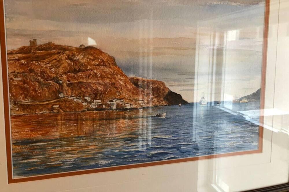Amazing view St. John's Harbour - Battery Snug