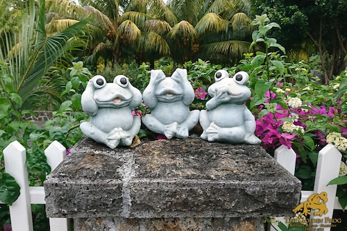 金蛙酒店/
