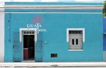 Picture of Guaya Hostel in Merida