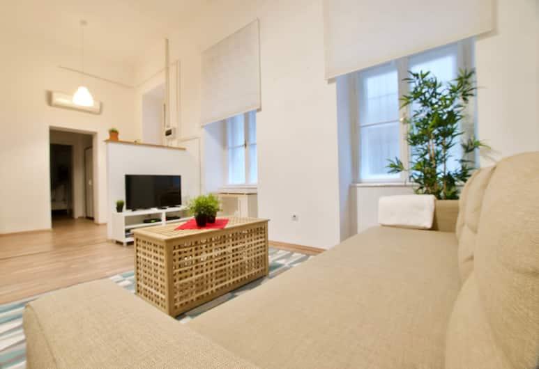 Standard Apartment by Hi5 -  Erzsébet blv 29, Budapeszt, Apartament z 2 sypialniami, Powierzchnia mieszkalna