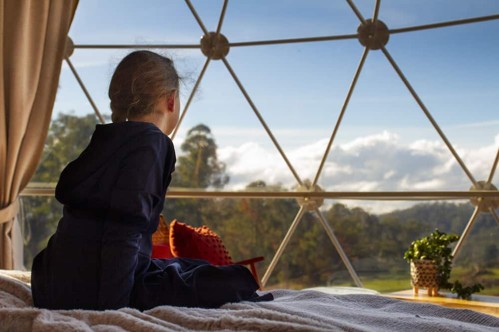 Panoramic Tent (The Pinot Glampers Dome) - Garden View
