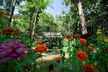 Slika: Luxury Camp@Green Jungle Park ‒ Luang Prabang
