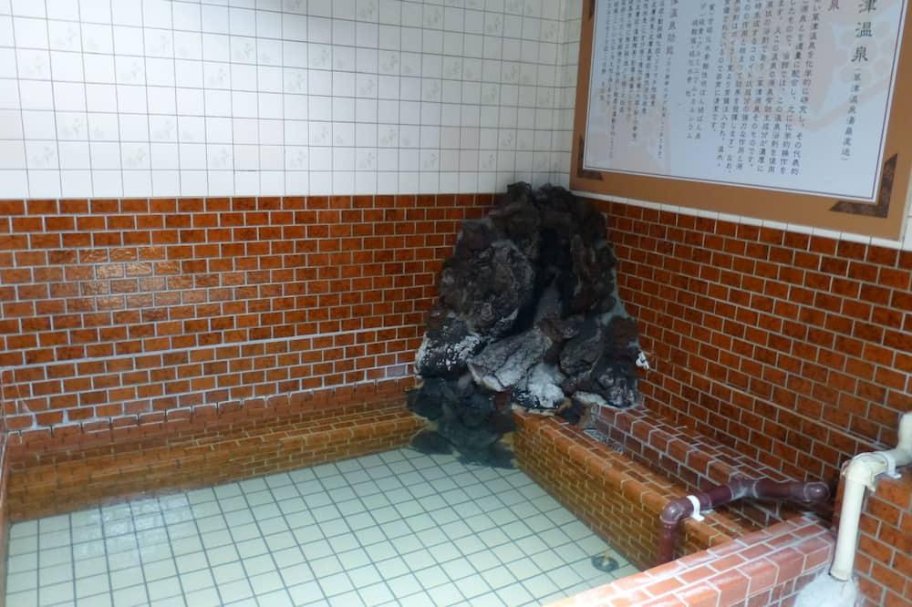 Japanese Style Family Room - Bathroom