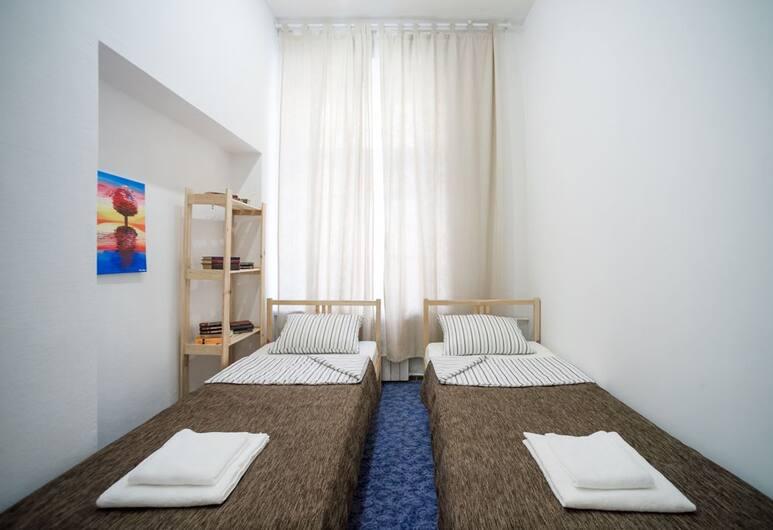 Отель «Чайковский на Неве», Санкт-Петербург, Стандартный двухместный номер с 2 односпальными кроватями, отдельная ванная комната, Номер