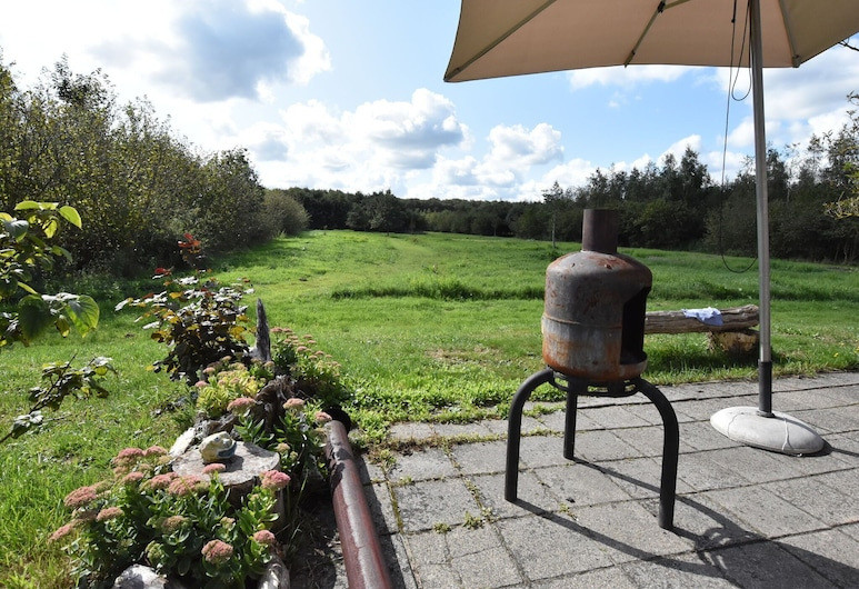 Secluded Holiday Home in Hollandscheveld With Forest Near, Hollandscheveld, Property Grounds