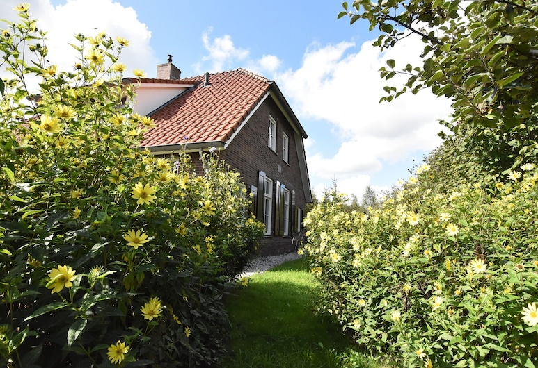 Secluded Holiday Home in Hollandscheveld With Forest Near, Hollandscheveld