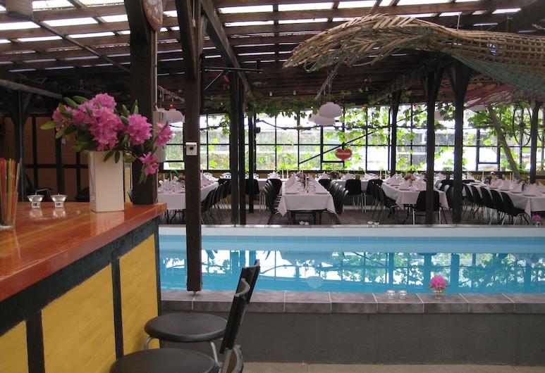 達寧胡斯飯店, 斯文堡, 室內游泳池