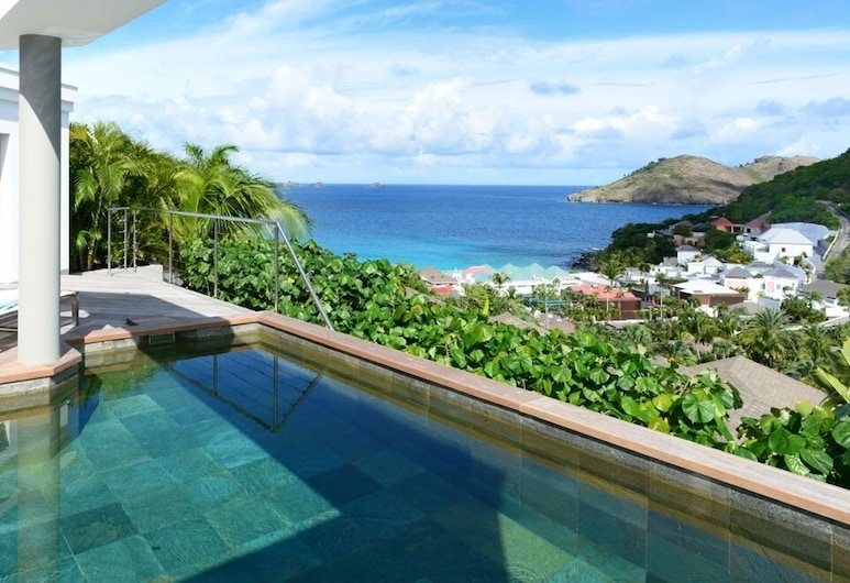 Villa Magic Bird, St. Barthelemy, Басейн