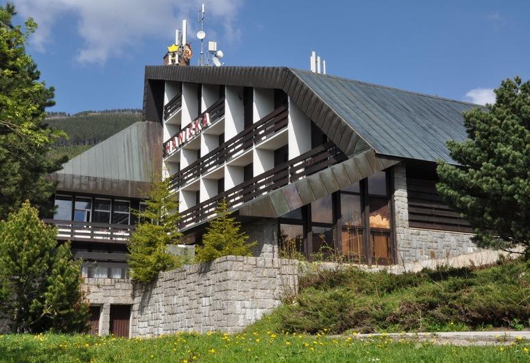 哈妮卡霍斯基飯店, 什平德萊魯夫姆林