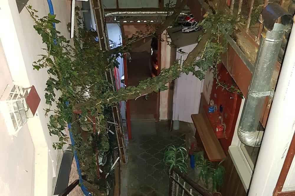 Habitación triple - Exterior