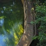 Dabīgs baseins
