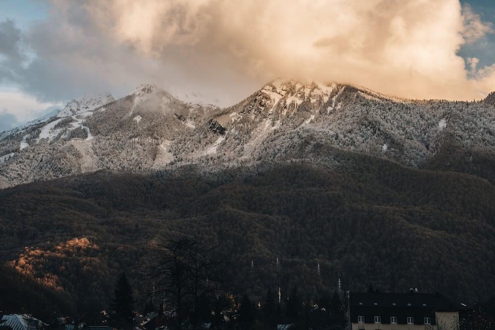 Family Oda - Dağ Manzaralı