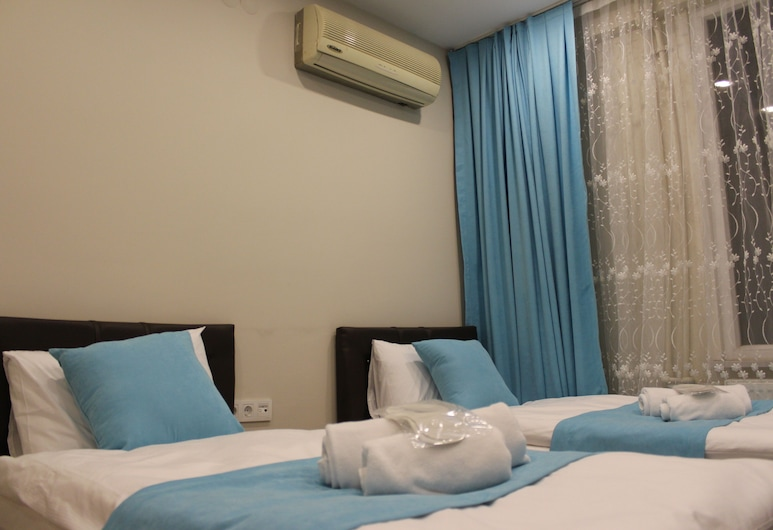 Istanbul Terrace Hotel, Istanbul, Classic - kahden hengen huone, Vierashuone