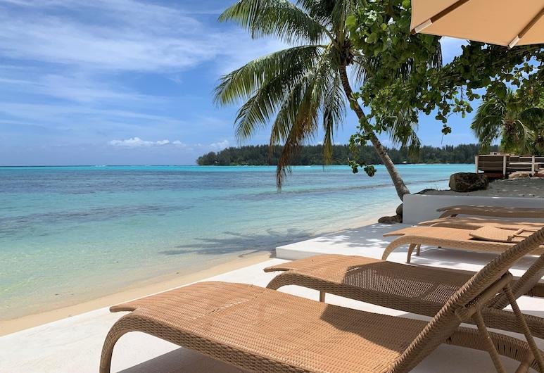 Moorea Island Beach, Moorea-Maiao, Plage