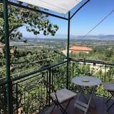 Išskirtinio tipo kambarys, balkonas - Balkonas
