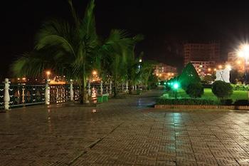 海防卡特巴白珍珠飯店的相片