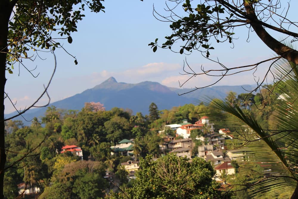 Kamar Double Standar - Pemandangan Pegunungan