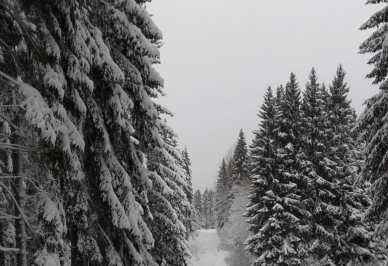 Feriendomizil Tippe, Braunlage, Ekoturistika