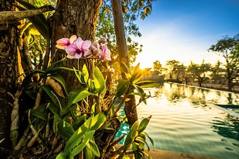 Image de Chatnipa Beach Resort By Morseng à Rayong
