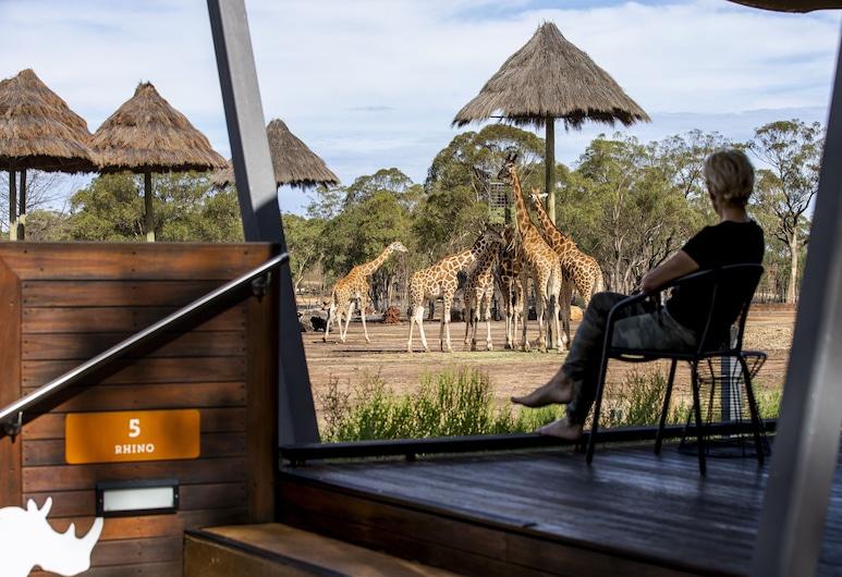 Zoofari Lodge at Taronga Western Plains, Dubbo, Soba (Animal View), Soba