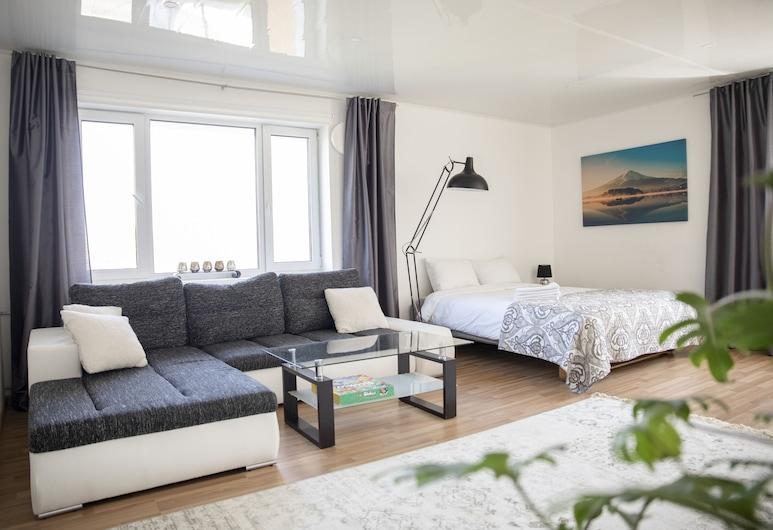 City center Turu-Tartu Home apartaments, Tartto, Huoneisto, 1 makuuhuone, Olohuone