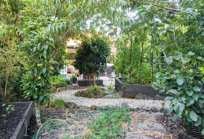 2 Bedroom Garden Oasis in Mount Eden, Oklenda, Dārzs