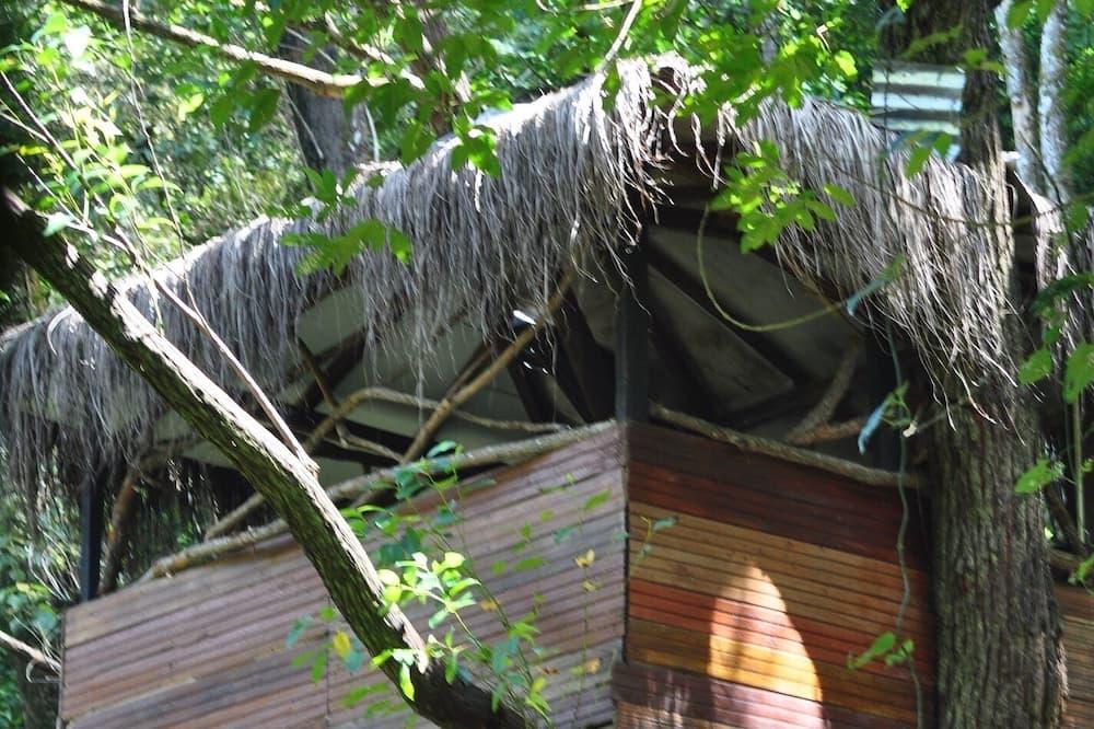 Dom v korune stromu typu Basic - Vybraná fotografia